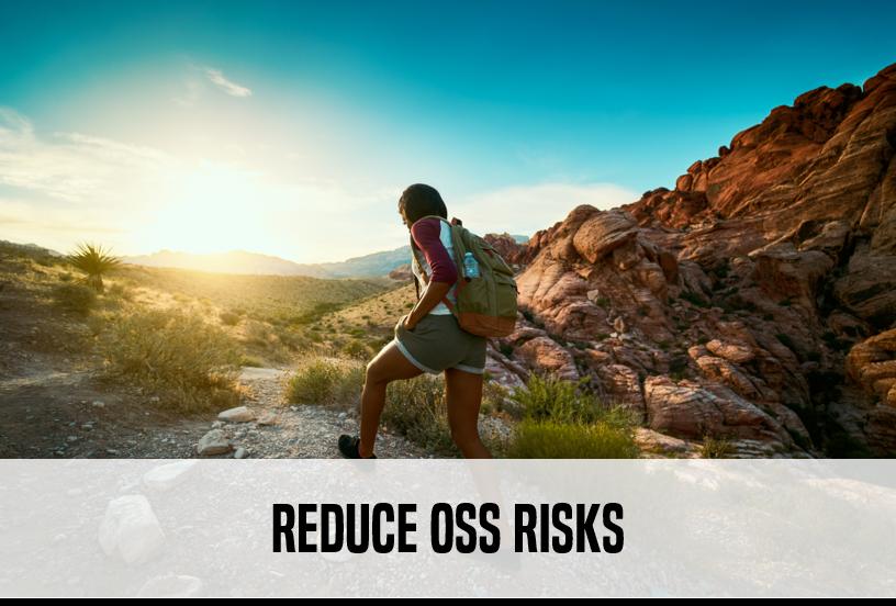 Reduce OSS Risks